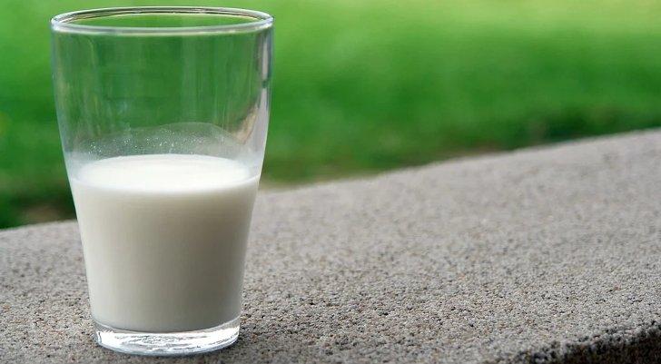 kelebihan susu kambing